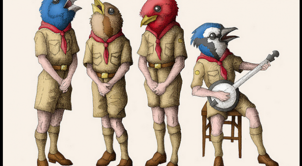 Songbirds by Allison Guy