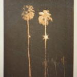 Lights In Trees (Palms #1)